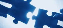 Advisors Advise - Directors Direct