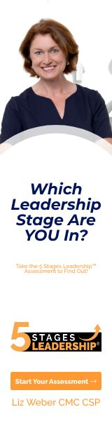 5 Stages Leadership™ Assessment